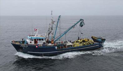 Embarcación T34 – Tasa